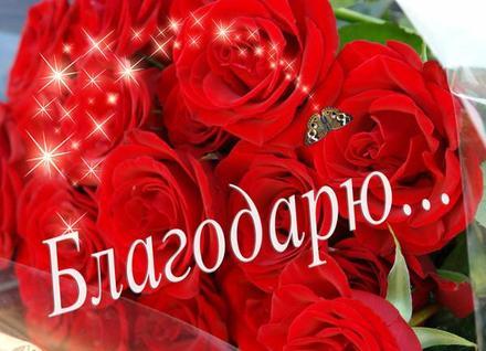 Открытка, картинка с очень красивым букетом роз. Открытка благодарю с букетом красных роз! Открытка спасибо! скачать открытку бесплатно | 123ot