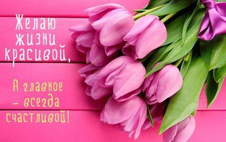 Розовая открытка на день рождения с тюльпанами. скачать открытку бесплатно | 123ot