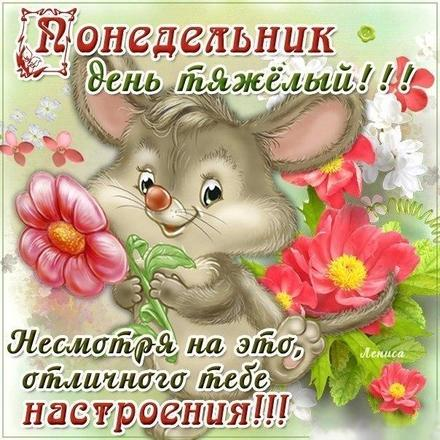Открытка, картинка. Ох уж этот понедельник! Мышка, цветочек и отличное настроение! Открытка про понедельник! Хорошего понедельника! скачать открытку бесплатно | 123ot