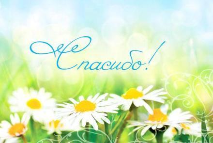 Открытка, картинка. Открытки с цветами. Ромашковое поле. Спасибо тебе! Открытка спасибо! скачать открытку бесплатно   123ot