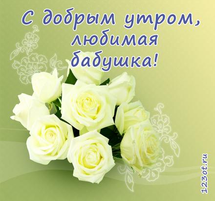 Открытка с добрым утром, бабушка! Белые розы. Открытка для бабушки! Доброе утро! скачать открытку бесплатно | 123ot