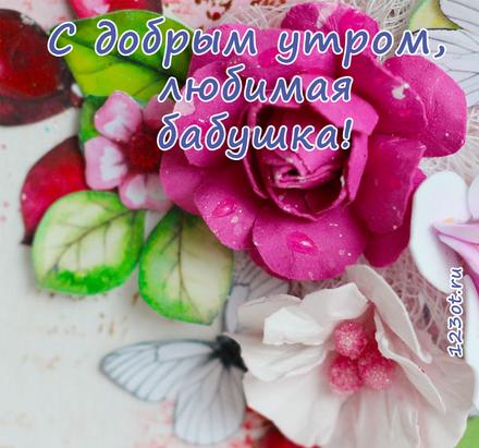 Открытка с добрым утром, бабушка! Открытка для бабушки! Малиновая роза. Малиновые цветы. Доброе утро! скачать открытку бесплатно | 123ot