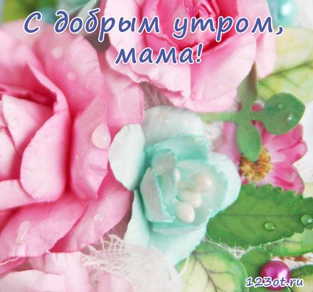 Открытка с добрым утром, мама! Цветочки маме. Цветы. Фон. Открытка для мамы! Доброе утро! скачать открытку бесплатно | 123ot