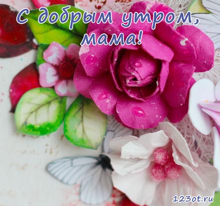 Открытка с добрым утром, мама! Открытка для мамы! Малиновый и белый цветок. Доброе утро! скачать открытку бесплатно | 123ot