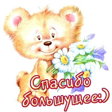 Открытка спасибо! Открытка, Картинка. Открытки с милыми животными. Милый медвежонок с цветочками, ромашками. скачать открытку бесплатно | 123ot