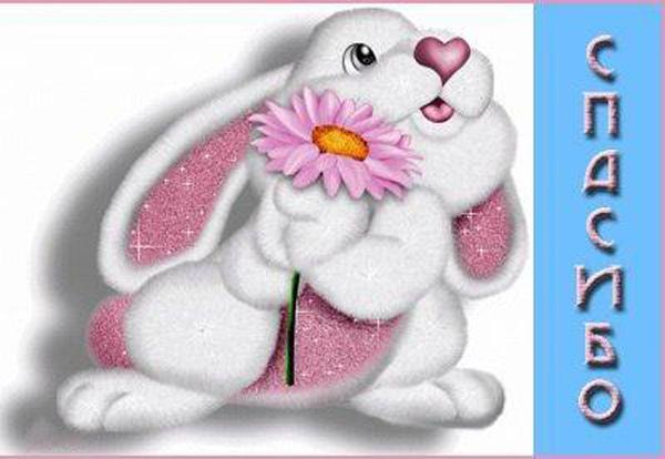 Фото, открытки спасибо зайка