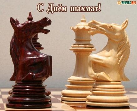 Открытки Международный День Шахмат! Черный и белый кони. Кони. Лошади. Открытка с поздравлением на день шахмат. С праздником, шахматисты! скачать открытку бесплатно | 123ot