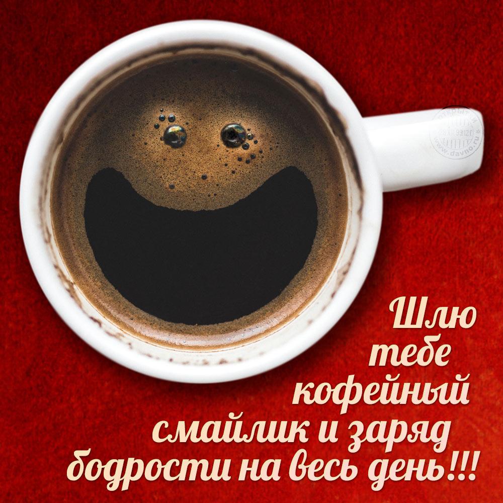 Доброе утро и хорошего дня картинки смешные с надписью