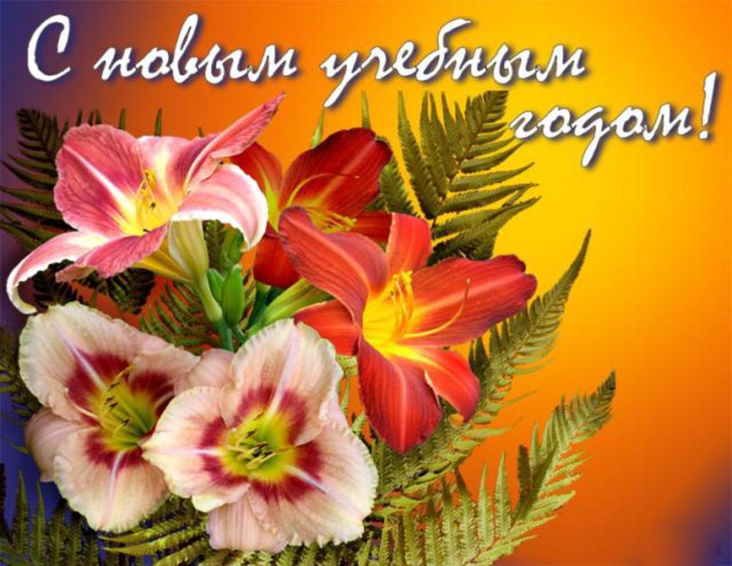 Поздравительные открытки учителям с 1 сентября