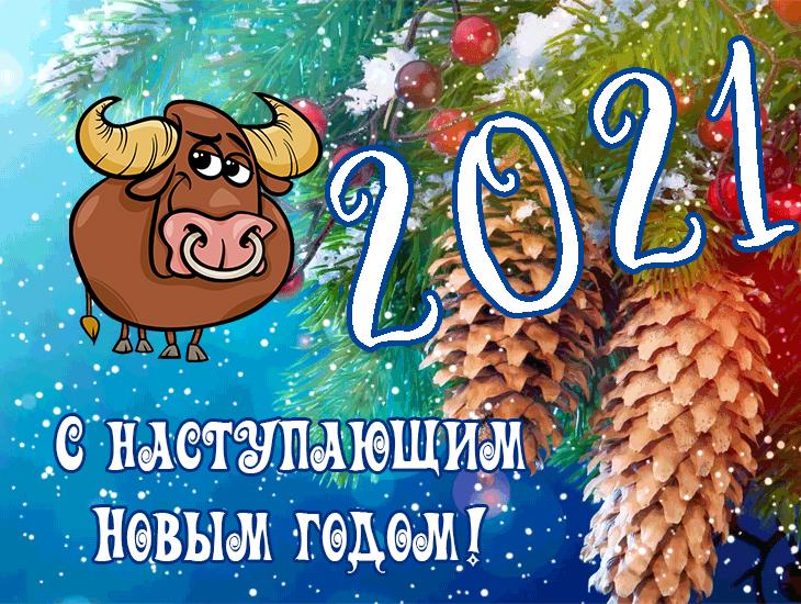 Открытка с наступающим 2021 годом быка! скачать открытку бесплатно | 123ot