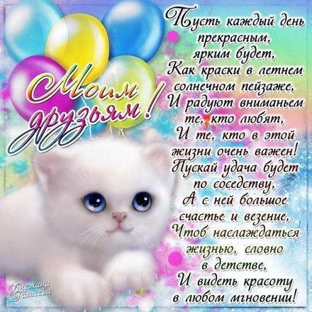 Открытка, картинка, дружба, открытка друзьям, открытка для друзей, открытка моим друзьям, стихи о дружбе, котенок. Открытки  Открытка, картинка, дружба, открытка друзьям, открытка для друзей, открытка моим друзьям, стихи о дружбе, котенок, стихи для друзей скачать бесплатно онлайн скачать открытку бесплатно | 123ot