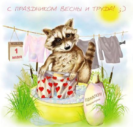 Открытка, картинка, 1 мая, Первомай, День весны и труда! Енот-полоскун! скачать открытку бесплатно | 123ot