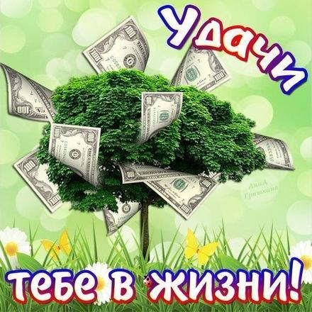 Открытка, картинка, богатство, деньги, живите богато, открытка для тебя, открытка тебе, желаю благополучия, открытка удачи. Открытки  Открытка, картинка, богатство, деньги, живите богато, открытка для тебя, открытка тебе, желаю благополучия, открытка удачи, денежное дерево скачать бесплатно онлайн скачать открытку бесплатно | 123ot
