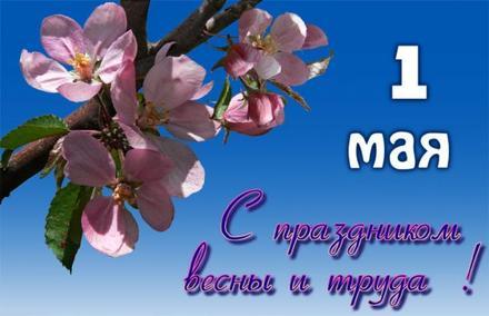 Открытка с цветами яблони на 1 мая, картинка с небом и цветами, 1 мая, Первомай, праздник, День весны и труда, поздравление! Мир, труд, май! скачать открытку бесплатно | 123ot