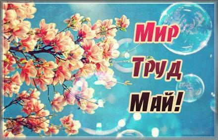 Открытка 1 мая, картинка, 1 мая, Первомай, праздник, День весны и труда, поздравление, небо. скачать открытку бесплатно | 123ot
