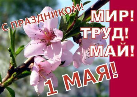 Открытка 1 мая, картинка, 1 мая, Первомай, праздник весны, День весны и труда, поздравление, мир, труд, май. скачать открытку бесплатно | 123ot