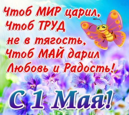 Открытка 1 мая, первомай, майские праздники, цветы на 1 мая, весна пришла, бабочка. Открытка на 1 мая, поздравление с первым маем! скачать открытку бесплатно   123ot