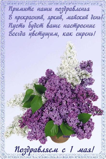 Открытка 1 мая, картинка, 1 мая, Первомай, праздник, День весны и труда, поздравление, цветочки, мир, труд, май, сирень. скачать открытку бесплатно | 123ot