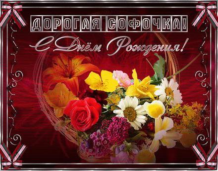 Открытка, картинка, с днем рождения, день рождения, поздравление, Софья. Открытки  Открытка, картинка, с днем рождения, день рождения, поздравление, Софья, Софа скачать бесплатно онлайн скачать открытку бесплатно | 123ot