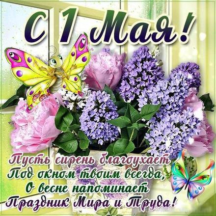 Открытка с 1 мая, картинка 1 мая, первомай, майские праздники, цветы, весна, сирень, бабочка. Скачать открытку бесплатно для WhatsApp и всех соц. сетей! скачать открытку бесплатно | 123ot