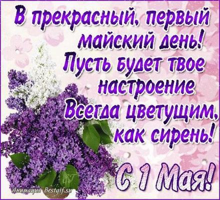 Открытка 1 мая, первомай, майские праздники, сирень. Открытка с поздравлением на 1 мая! Стих, стишок, 1 мая! скачать открытку бесплатно | 123ot