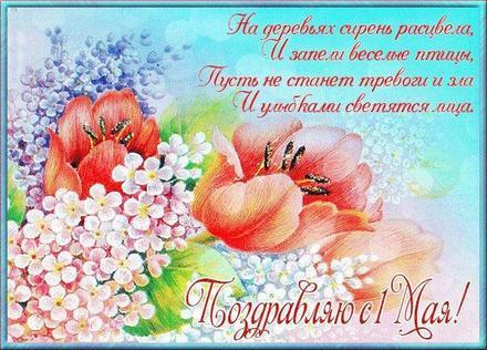 Открытка на 1 мая с красивыми тюльпанами, нежная картинка 1 мая, Первомай, цветы, праздник, День весны и труда, поздравление на майские праздники! скачать открытку бесплатно | 123ot