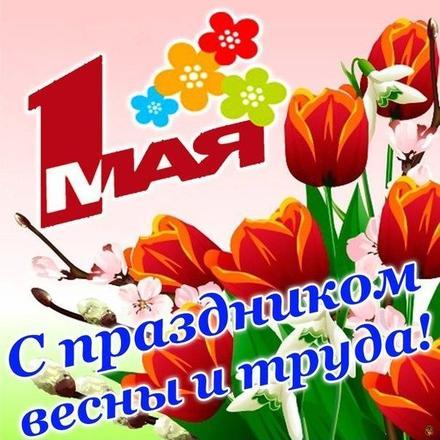 Открытка 1 мая, картинка на 1 мая, Первомай, праздник, День весны и труда, поздравление, мир, труд, май, тюльпаны. скачать открытку бесплатно | 123ot