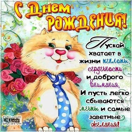 Открытка, картинка, открытка на день рождения, прикольная открытка с днем рождения, поздравление с днём рождения, поздравление на день рождения, пожелание на день рождения, розы, котик. Открытки  Открытка, картинка, открытка на день рождения, прикольная открытка с днем рождения, поздравление с днём рождения, поздравление на день рождения, пожелание на день рождения, розы, котик, стихи скачать бесплатно онлайн скачать открытку бесплатно   123ot