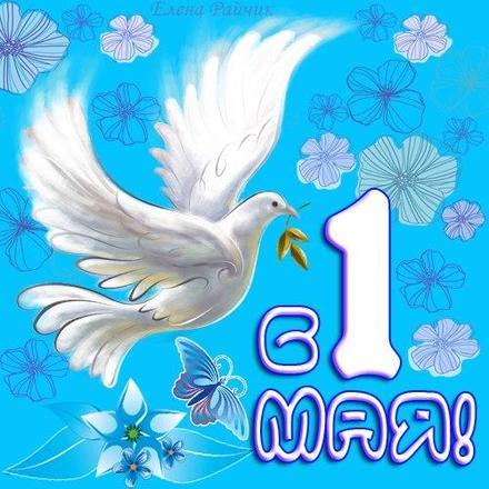 Открытка на 1 мая, картинка на 1 мая, 1 мая, Первомай, праздник, День весны и труда, поздравление, небо, голубь. скачать открытку бесплатно | 123ot