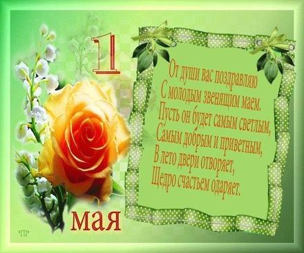 Открытка с розой на 1 мая, картинка 1 мая, Первомай, праздник, День весны и труда, поздравление с розой, мир, труд, май, майские праздники, стихи! скачать открытку бесплатно | 123ot