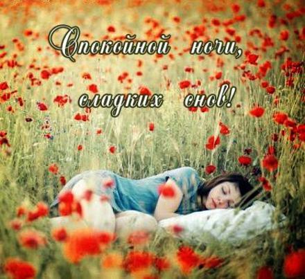 Открытка, спокойной ночи, сладких снов, девушка, спящяя в поле среди маков, скачать бесплатно. скачать открытку бесплатно | 123ot