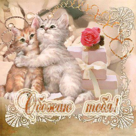 Открытка, картинка, любовь, признание в любви, люблю тебя, открытка любовь, для любимой, я люблю тебя, обожаю тебя. Открытки  Открытка, картинка, любовь, признание в любви, люблю тебя, открытка любовь, для любимой, я люблю тебя, обожаю тебя, котята скачать бесплатно онлайн скачать открытку бесплатно | 123ot