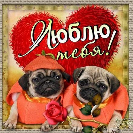 Открытка, картинка, любовь, признание в любви, люблю тебя, открытка любовь, для любимых. Открытки  Открытка, картинка, любовь, признание в любви, люблю тебя, открытка любовь, для любимых, сердечко скачать бесплатно онлайн скачать открытку бесплатно | 123ot