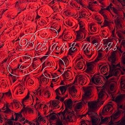 Открытка, картинка, для тебя, открытка для тебя с любовью, тебе с любовью, открытка для любимого, открытка для любимой. Открытки  Открытка, картинка, для тебя, открытка для тебя с любовью, тебе с любовью, открытка для любимого, открытка для любимой, открытка все для тебя скачать бесплатно онлайн скачать открытку бесплатно   123ot