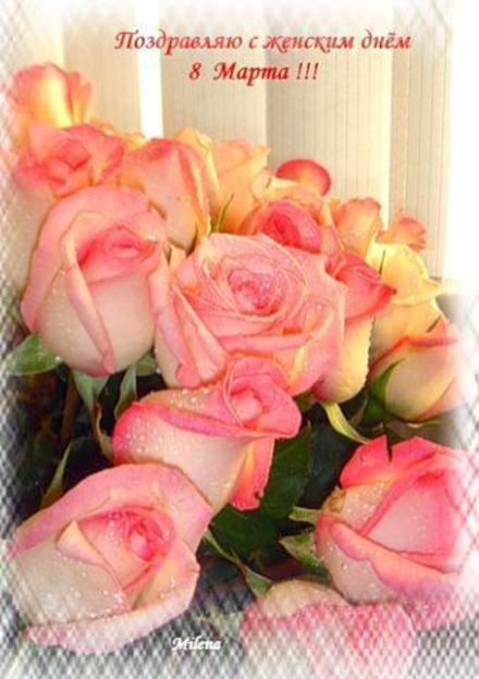 Открытка, картинка, 8 марта, открытка на 8 марта, открытка с 8 марта, цветы, розы. Открытки  Открытка, картинка, 8 марта, открытка на 8 марта, открытка с 8 марта, поздравление на 8 марта, поздравление с 8 марта, картинка 8 марта, картинка с 8 марта, международный женский день скачать бесплатно онлайн скачать открытку бесплатно   123ot