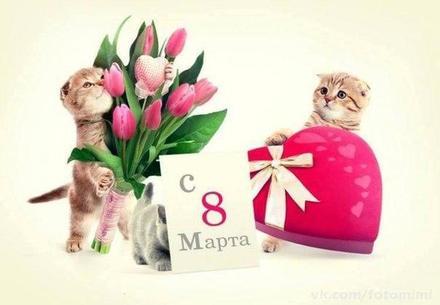 Открытка, картинка, 8 марта, открытка на 8 марта, открытка с 8 марта, котята. Открытки  Открытка, картинка, 8 марта, открытка на 8 марта, открытка с 8 марта, поздравление на 8 марта, поздравление с 8 марта, картинка 8 марта, картинка с 8 марта, международный женский день скачать бесплатно онлайн скачать открытку бесплатно | 123ot