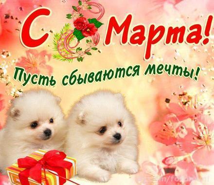 Открытка, картинка, 8 марта, открытка на 8 марта, открытка с 8 марта, собачки. Открытки  Открытка, картинка, 8 марта, открытка на 8 марта, открытка с 8 марта, поздравление на 8 марта, поздравление с 8 марта, картинка 8 марта, картинка с 8 марта, международный женский день скачать бесплатно онлайн скачать открытку бесплатно | 123ot