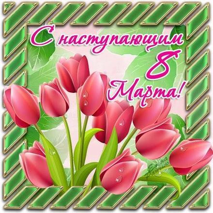 Открытка, картинка, 8 марта, международный женский день, праздник, поздравление, тюльпаны. Открытки  Открытка, картинка, 8 марта, международный женский день, праздник, поздравление, тюльпаны, цветы скачать бесплатно онлайн скачать открытку бесплатно | 123ot