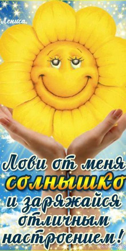 Открытка хорошего настроения, лови от меня солнышко, подсолнух, улыбайся, пожелание отличного настроения! скачать открытку бесплатно | 123ot