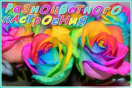 Яркая открытка хорошего, разноцветного настроения, цветные розы, много цветов, улыбайся, пожелание отличного настроения! скачать открытку бесплатно | 123ot