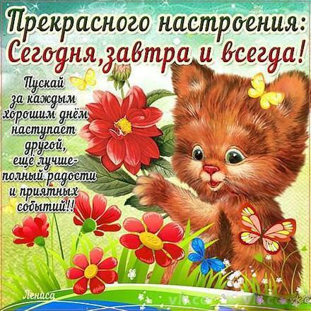 Открытка хорошего настроения, красные цветы, кот, улыбайся, пожелание отличного настроения! скачать открытку бесплатно | 123ot
