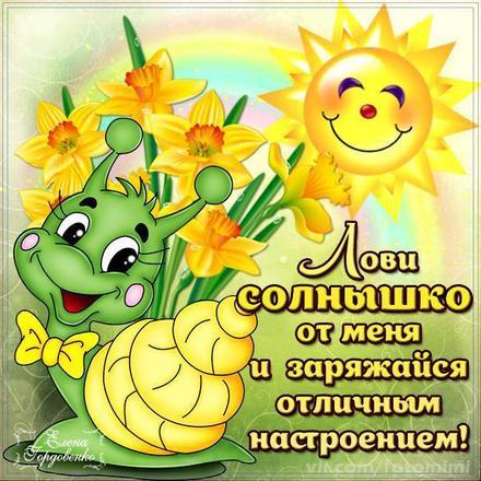 Открытка хорошего настроения, лови солнышко, улыбайся, пожелание отличного настроения! скачать открытку бесплатно   123ot