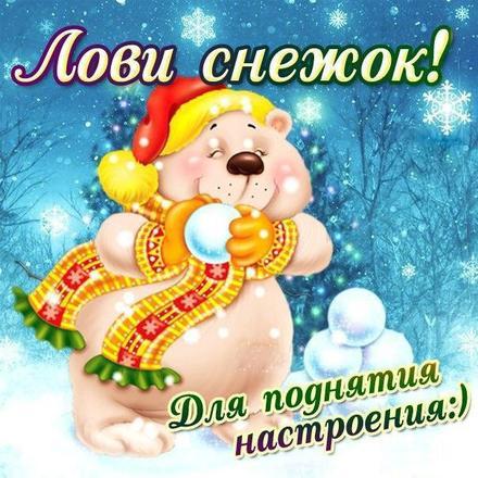 Открытка хорошего настроения, улыбайся, лови снежок, зима, мишка, новый год, пожелание отличного настроения! скачать открытку бесплатно | 123ot