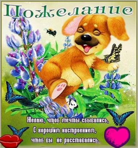 Смешная открытка хорошего настроения, улыбайся, бабочки, щенок, сердечко и поцелуйчик пожелание отличного настроения! скачать открытку бесплатно | 123ot