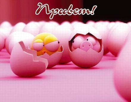 Открытка привет, приветик! Картинка привет, приветик! Веселая позитивная открытка с яйцами! скачать открытку бесплатно | 123ot