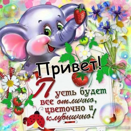 Открытка привет, приветик! Картинка привет, приветик! Открытка привет со слоном! Открытка привет со слоником! Открытка привет со стихом! скачать открытку бесплатно | 123ot