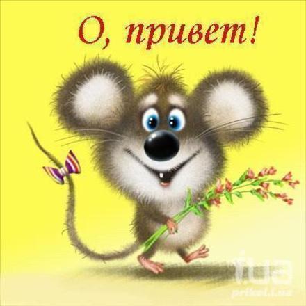 Прикольная открытка привет, приветик с прикольной мышкой! Картинка привет, приветик! скачать открытку бесплатно   123ot