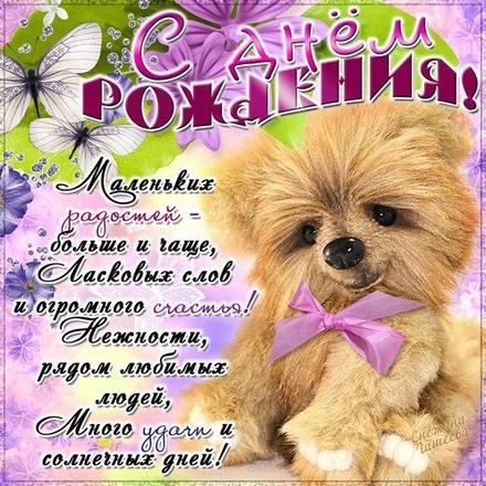 Открытка на день рождения! Поздравляю с Днём Рождения! Собачка Тебе! скачать открытку бесплатно | 123ot