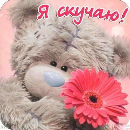 Открытка скучаю, милый мишка тедди, цветок, для девушки, я скучаю по тебе, картинка скучаю, жду тебя, мне грустно без тебя, очень скучаю без тебя. скачать открытку бесплатно | 123ot