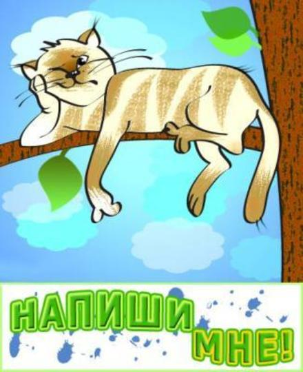 Прикольная открытка напиши мне, недовольный кот, я скучаю по тебе, картинка скучаю, жду тебя, мне грустно без тебя, очень скучаю без тебя. скачать открытку бесплатно   123ot